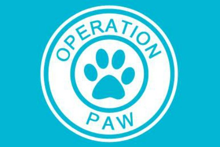 Operation Paw's Parody Music Video